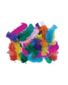 Caja con plumas de diferentes colores